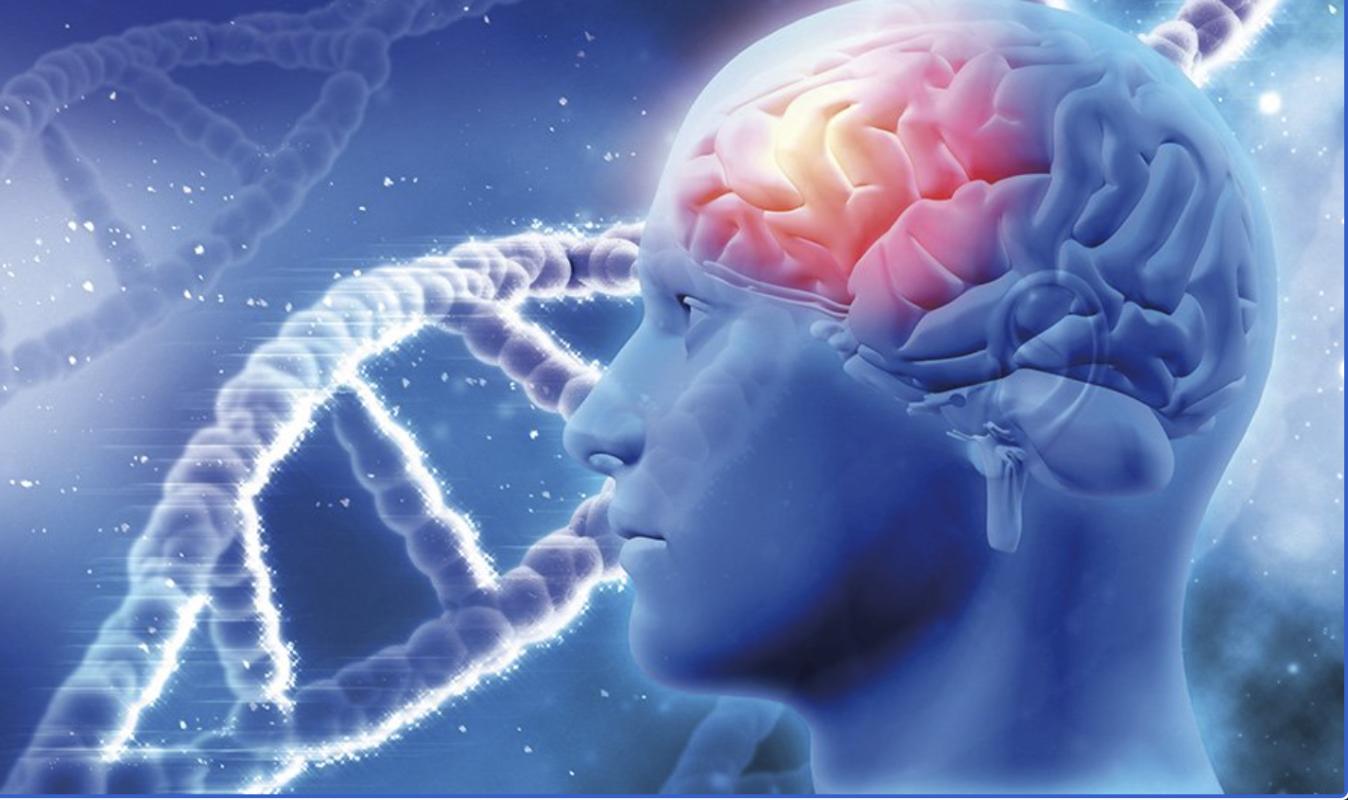 Can Cbd Oil Treat Alzheimer's?
